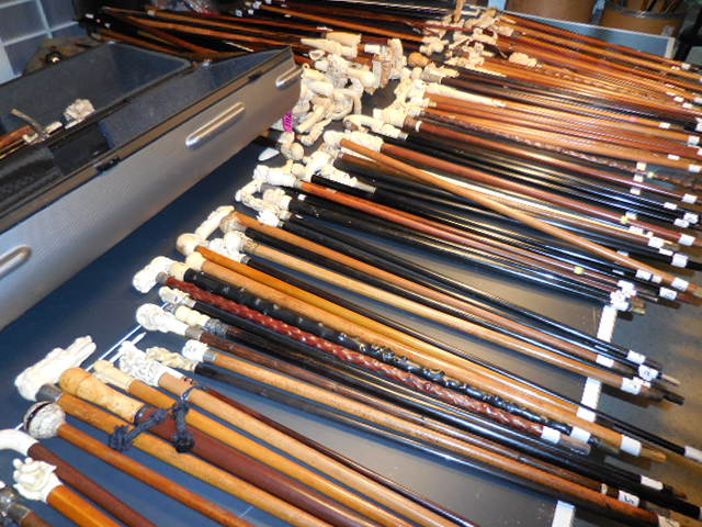 The Henry Foster Cane Collection - DSCN0027.JPG