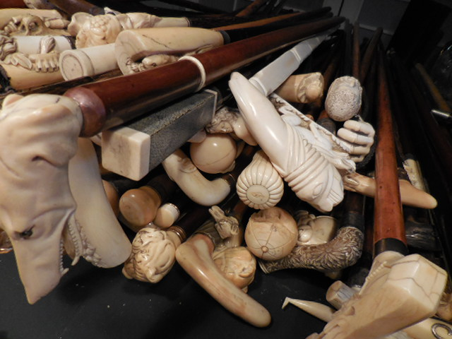 The Henry Foster Cane Collection - DSCN0050.JPG