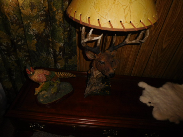 Steve Woodyard Estate-Household, Guns, Great Tools, Hunting and much more - DSCN5435.JPG