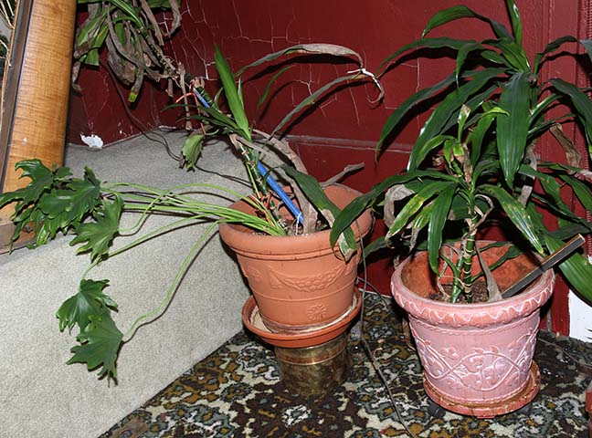 Masengills Specialty Clothing Store- A 100 year old East Tennessee Upscale Department Store - 13_1.jpg