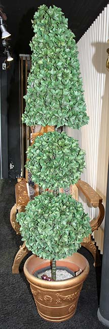 Masengills Specialty Clothing Store- A 100 year old East Tennessee Upscale Department Store - 86_1.jpg