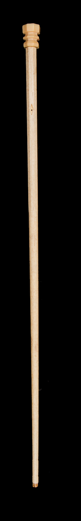 Antique and Quality Modern Cane Auction - 2b.jpg